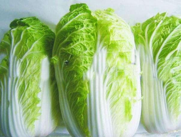 白菜如何按生长期追肥?