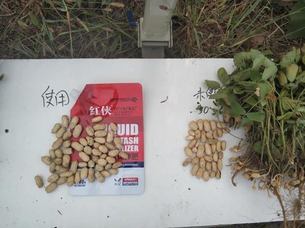 朴欣推出水稻水溶肥营养套餐